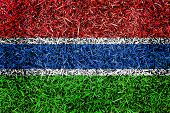 Gambia Flag Color Grass Texture Background