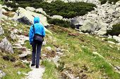Alpine trekking in National Park Retezat, Romania