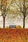 Park bench Autumn