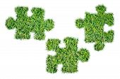 Green Grass Ecological Puzzles Grass Icon