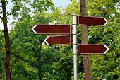 Blank Way Direction Signs On Green Tree Background