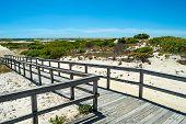 Boardwalk Through Dunes