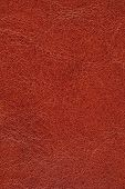 Brown Leather Texture For Background