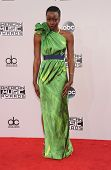 LOS ANGELES - NOV 23:  Danai Gurira arrives to the 2014 American Music Awards on November 23, 2014 in Los Angeles, CA