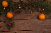 pic of tangerine-tree  - Still - JPG