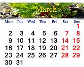 Calendar For March Of 2015 Year With Rhubarb