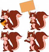 Cute carton squirrel collection set