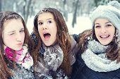 Three Teenage Girls Having Fun In The Snow