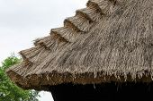 Traditional Thatched Roof On Countryside