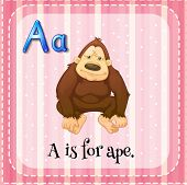 Flashcard of an alphabet A