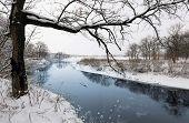 Winter scene with tree near river