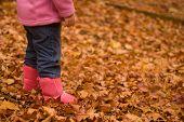 Girl In Autumn Leaves