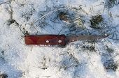 Knife With Blood On Snow