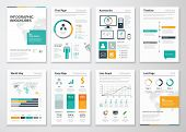 Collection of infographic brochure vector elements for business