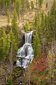 stock photo of undine  - Undine Falls surrounded by fall colors Yellowstone National Park Wyoming United States - JPG