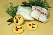 foto of rudolf  - round and tasty Rudolf Cookies for Christmas - JPG