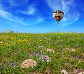 image of golan-heights  - Flowering Golan Heights in a beautiful sunny day - JPG