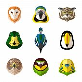 picture of toucan  - Wild bird front portrait set with owl parrot toucan isolated vector illustration - JPG
