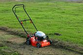 picture of tall grass  - Lawn mower cutting the tall grass in the backyard - JPG