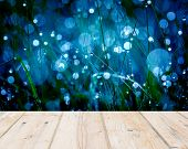 image of wet  - Wet springtime grass with bokeh effect and wooden floor - JPG