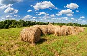 image of hay bale  - Hay and straw bales on farmland under blue sky in summer day - JPG