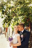 pic of bridal veil  - Elegant bride and groom posing together outdoors on a wedding day - JPG