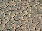 pic of earth structure  - cracked and dried earth texture made of mud - JPG
