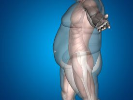 stock photo of big belly  - Concept or conceptual 3D fat overweight vs slim fit diet with muscles young man blue gradient background - JPG