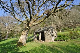 picture of outhouse  - Garden outhouse - JPG