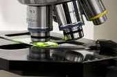 foto of microscope slide  - Microscope in a laboratory - JPG