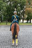 Cavalryman On Parade