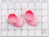 Babys Due Date