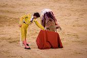 MADRID - AUGUST 8: The torero Antonio Espaliu fights a bull named Lujoso in the Las Ventas bullring
