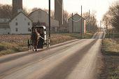 Amish cavalo e buggy, Condado de Chester, país do Dutch de Pensilvânia