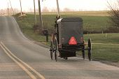 Amish horse and buggy, Chester County, Pennsylvania Dutch Country