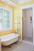 classical style bathroom with clawfoot tub and shower