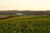 Bauernhof in Amish Land von pennsylvania