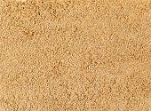 sand closeup as texture