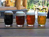 4 Color Biers