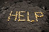 word HELP from grains of corn over cracked earth