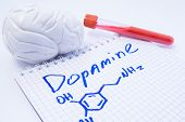 Neurotransmitter Dopamine In Brain. Anatomic 3d Brain Model, Lab Test Tube With Blood And Note, Wher poster