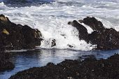 Waves Rolling In To Tide Pool