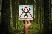 Animal Poaching Restricted As Hand Holding A Paper Sheet With Deer Symbol Over Forest Background. Re poster