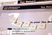 Taxes Form