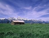 Hut In The Tetons