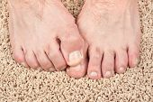 A man with itchy feet uses his big toe to scratch his other foot. Good for grooming inferences as we