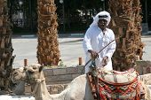 JERICHO , ISRAEL - OCTOBER 04: Unidentified Bedouin man wait tourist near his dromedary in Jericho,