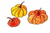 Thanksgiving Themed Design
