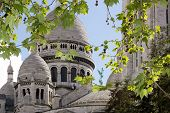 The Sacre Coeur in a green setting   Montmarte Paris France