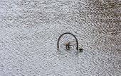 Bicycle Wheel Protrudes Above The Water Surface Of The Canal